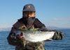masu_trout